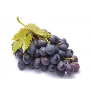 """Résultat de recherche d'images pour """"raisin noir muscat"""""""